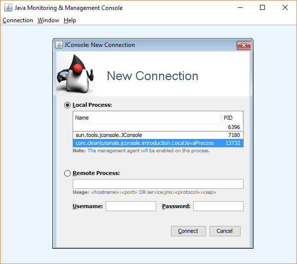 JConsole connection window showing the local Java processes.
